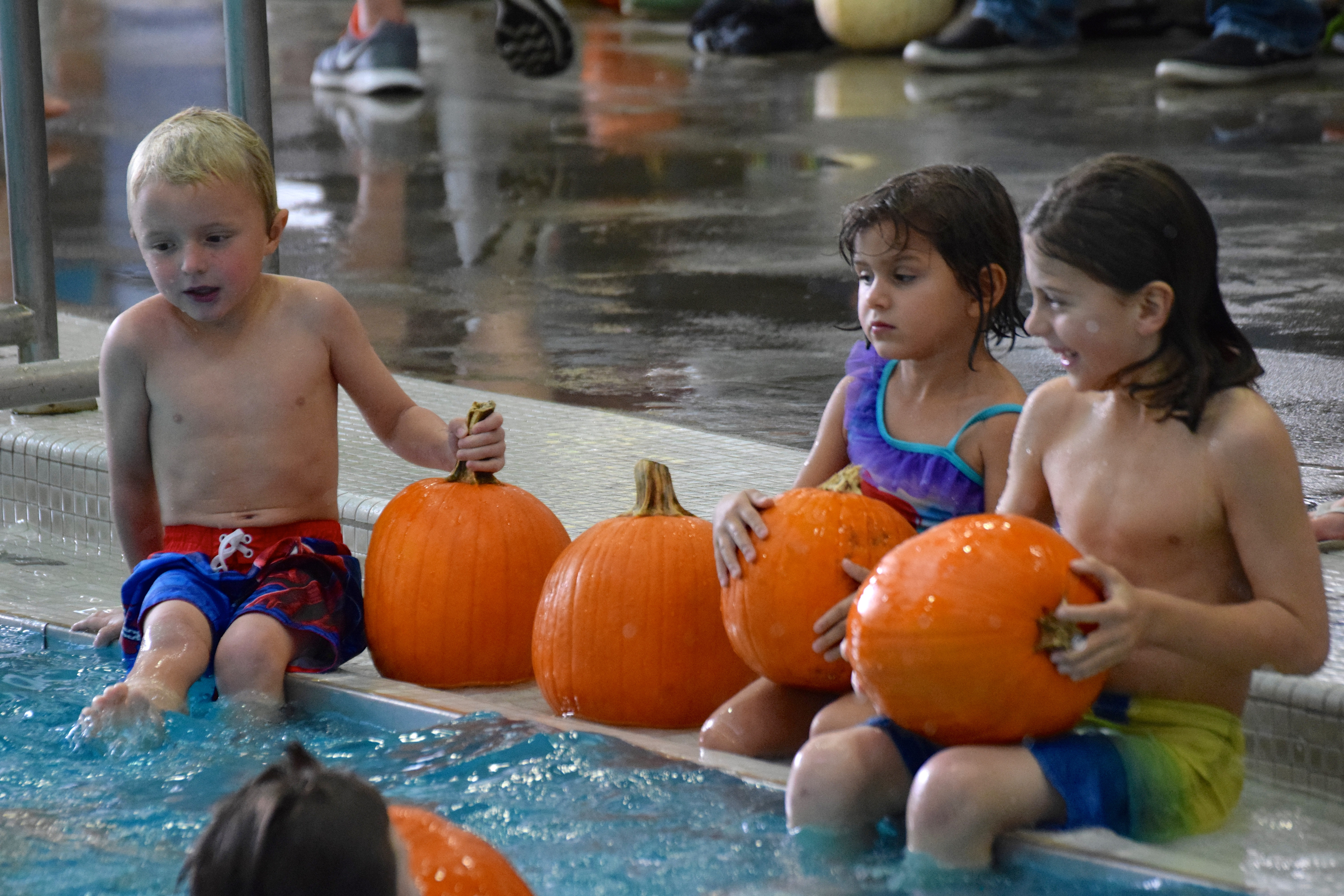 Pumpkin Patch in the Pool